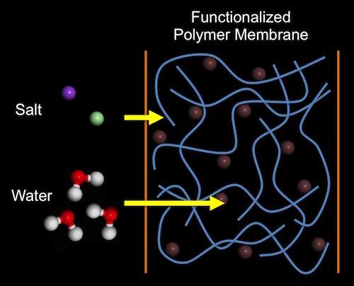 membrane diagram